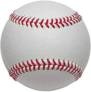 日本の野球が始まった。アメリカも来月だってさ